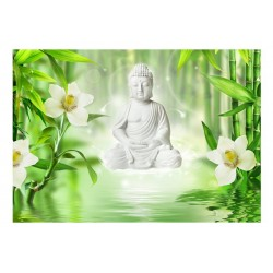 FOTOTAPET BUDDHAOCH NATUR