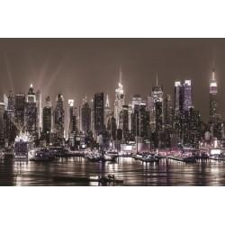1311V8 - Fototapet New York i Sepia