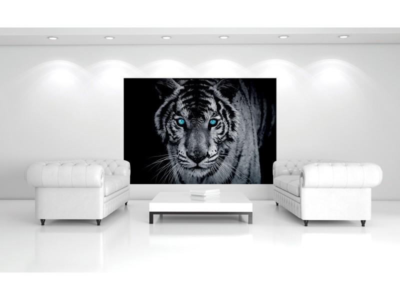 153V8 - Fototapet vit tiger