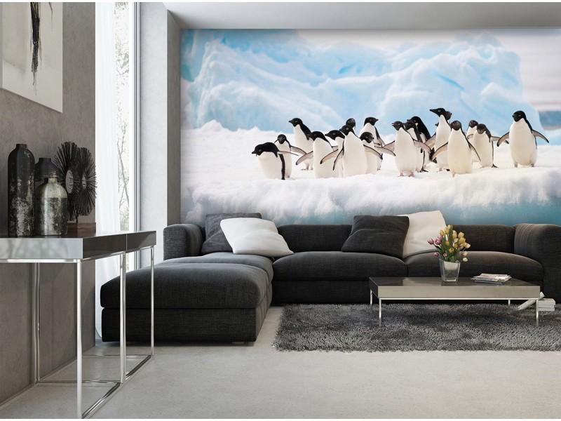 2726V8 - Fototapet pingviner på isflak