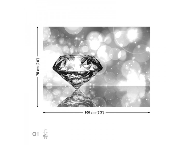 Shiny Diamond Canvastavla (PP1570O1)