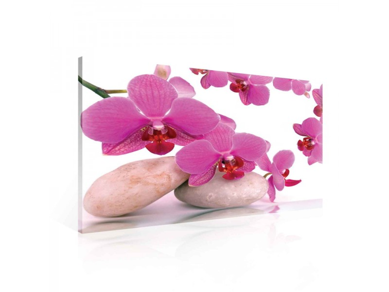 Canvastavla Orchid Flowers Stones (PP136O1)