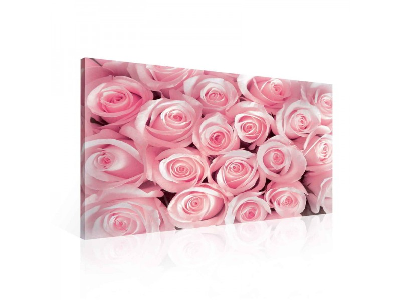 Canvastavla Pink Roses Flowers (PP1567O1)