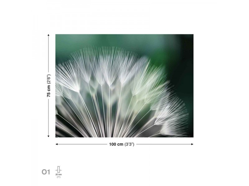 Canvastavla Dandelion Nature (PP118O1)