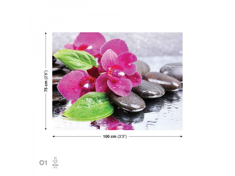 Canvastavla Flowers Orchids Stones Pink (PP2506O1)