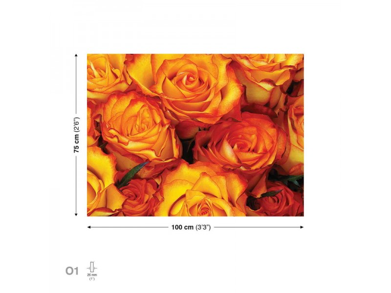 Canvastavla Roses Red Yellow (PP2512O1)