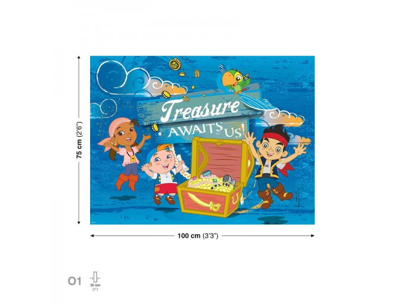 Canvastavla Jake Never Land Pirates (PPD354O1)
