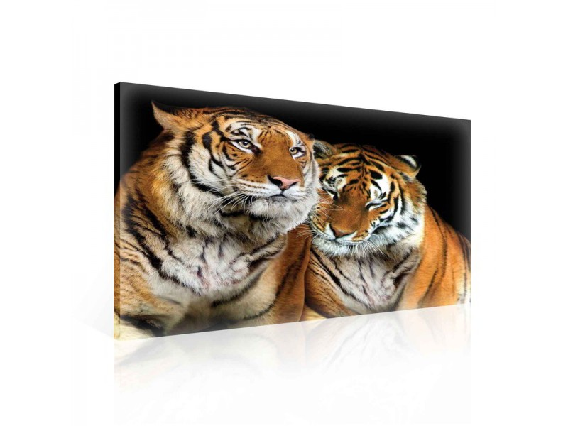 Tigers Animal Cuddle Canvastavla (PP131O1)