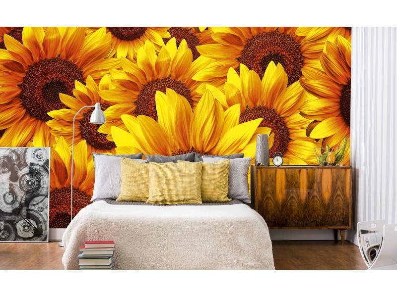 FOTOTAPET EASY UP HELIANTHUS