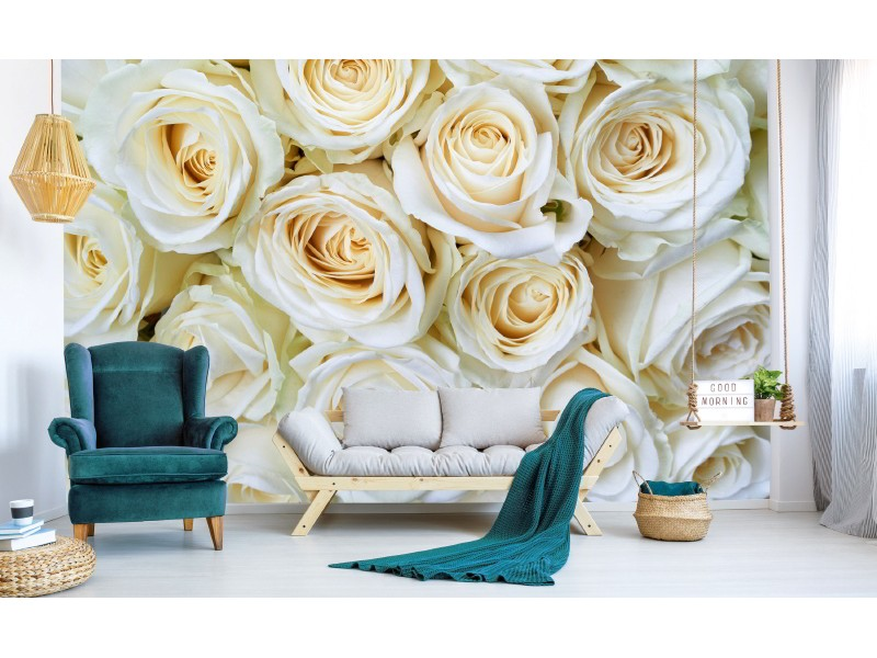 FOTOTAPET EASY UP WHITE ROSES