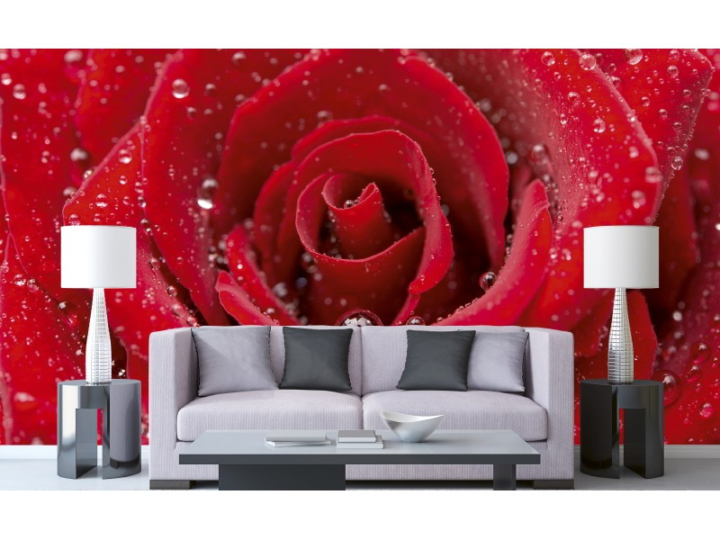 FOTOTAPET EASY UP RED ROSE