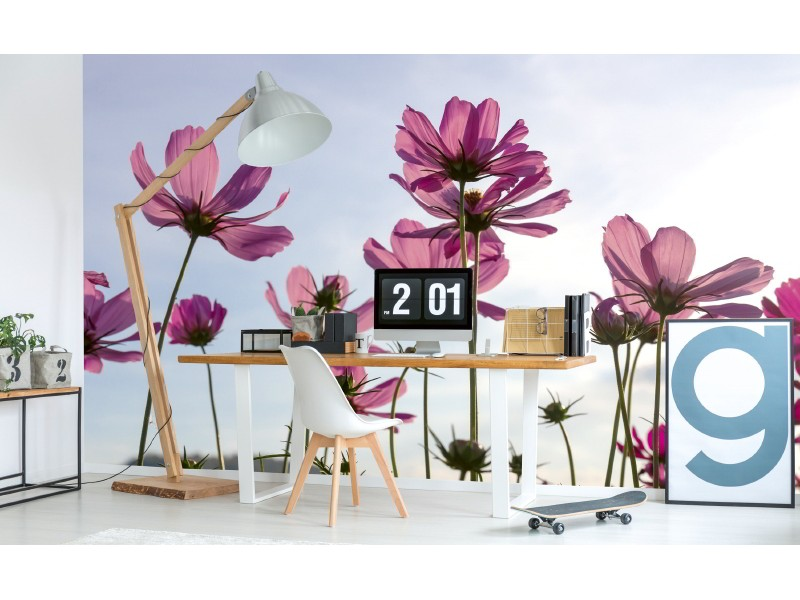 FOTOTAPET EASY UP COSMOS FLOWERS