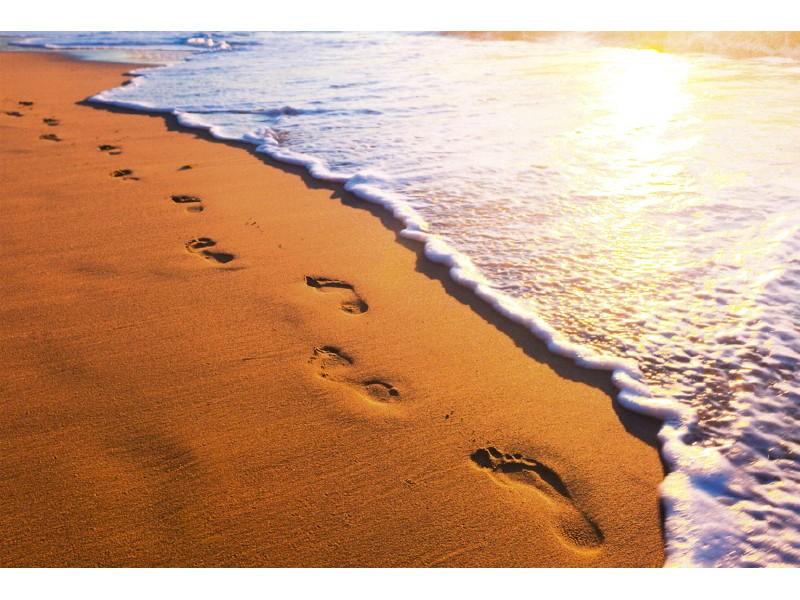 FOTOTAPET EASY UP FOOTSTEPS