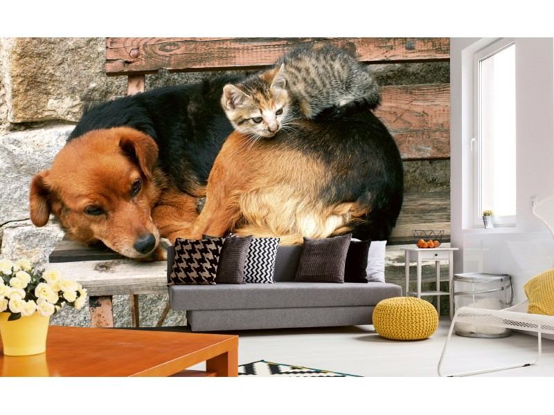 FOTOTAPET EASY UP CAT AND DOG