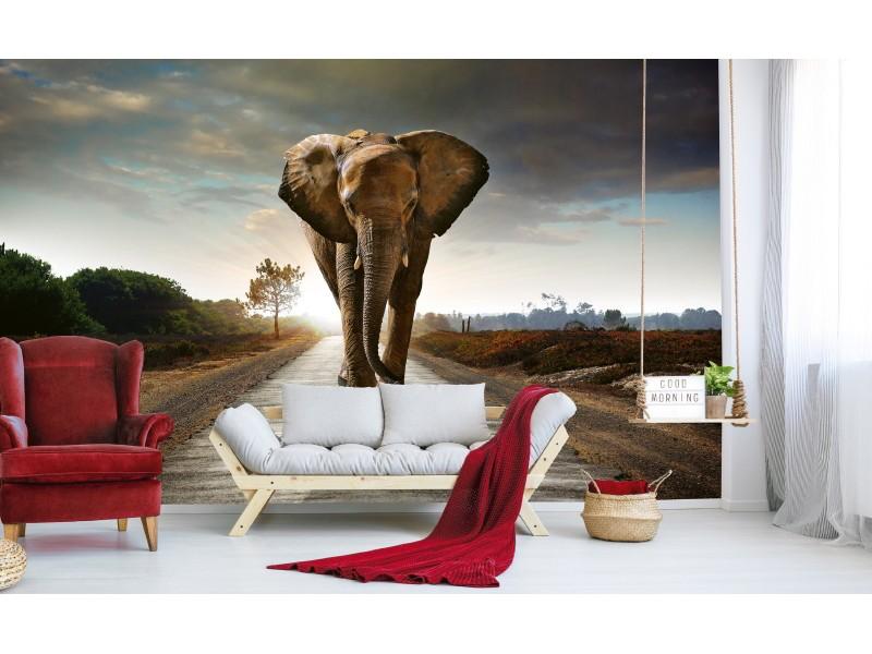 FOTOTAPET EASY UP WALKING ELEPHANT