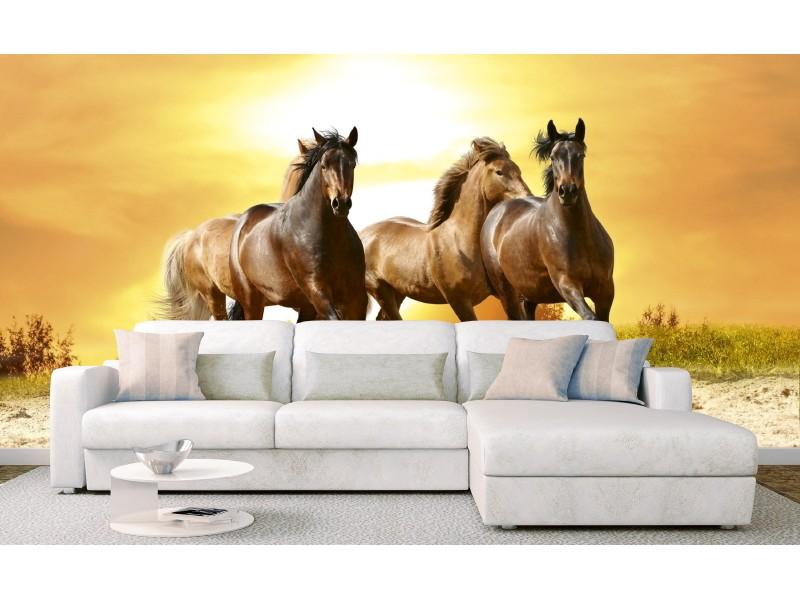 FOTOTAPET EASY UP HORSES IN SUNSET