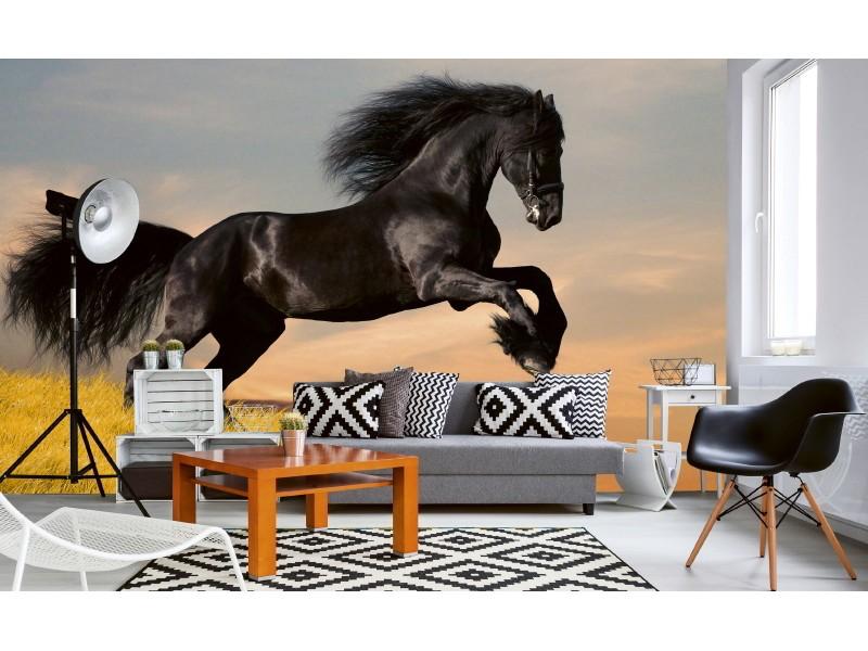 FOTOTAPET EASY UP HORSE