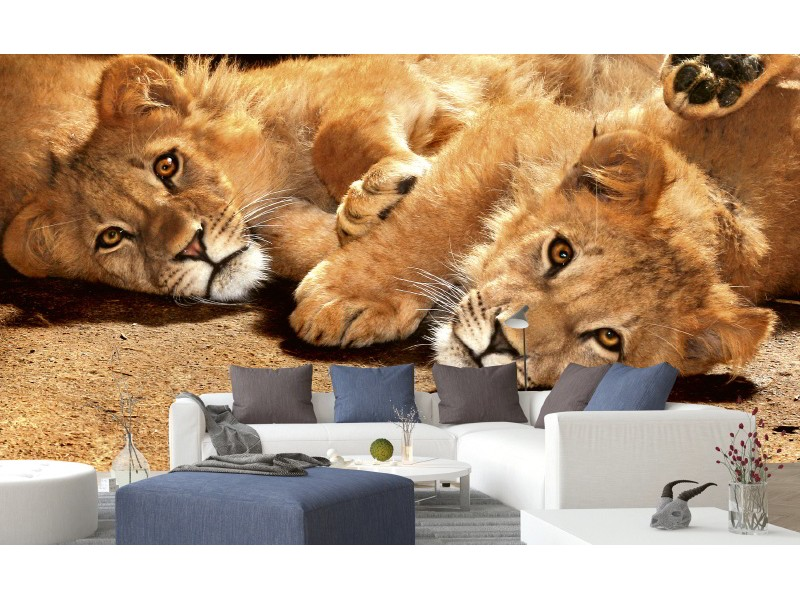 FOTOTAPET EASY UP YOUNG LIONS