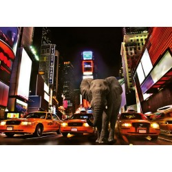 FOTOTAPET ELEFANT I NEW YORK
