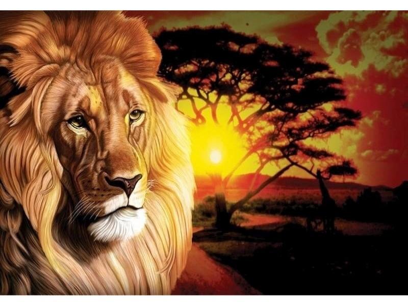 FOTOTAPET AFRIKANSK LEJON