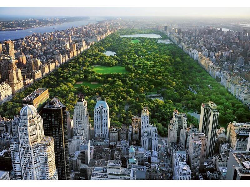 FOTOTAPET CENTRAL PARK I NEW YORK
