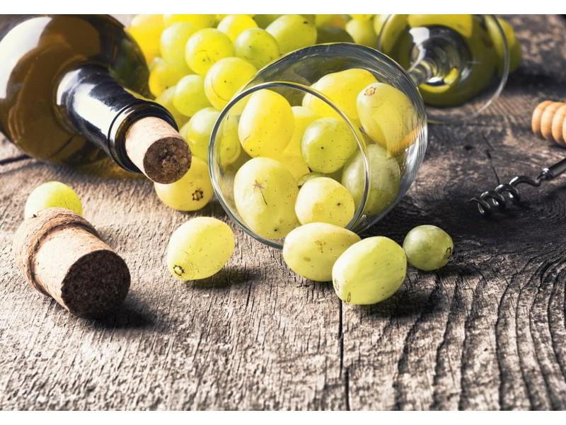 M0836 - Fototapet flaska vitt vin, vindruvor och kork