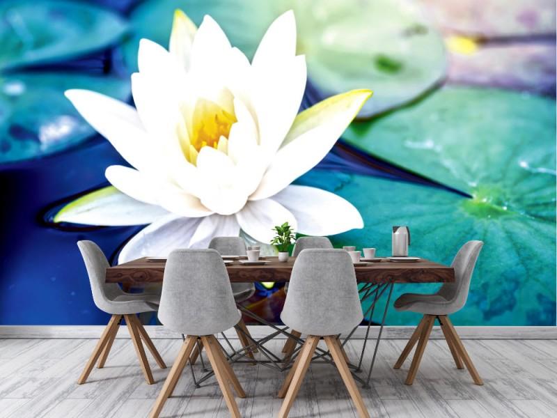 Fototapet vacker vit lotusblomma (101529769)