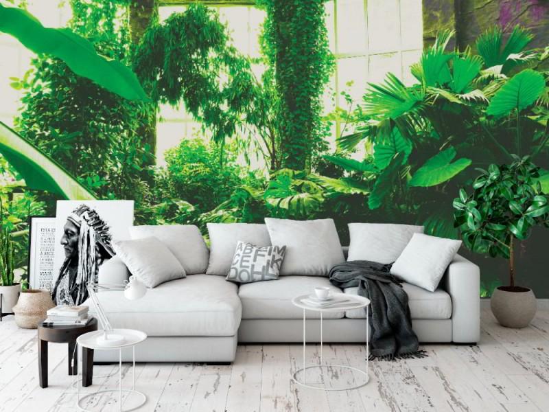 Fototapet tropiska växter i växthus