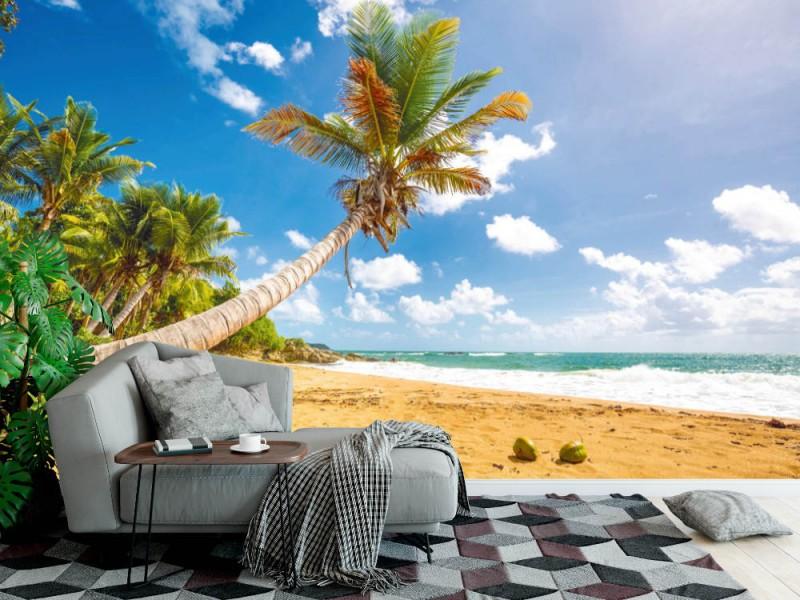 Fototapet Flamenco stranden i Puerto Rico (114707223)