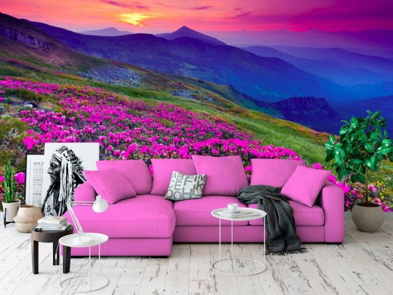 Fototapet magiska rosa rododendronblommor på sommarberget