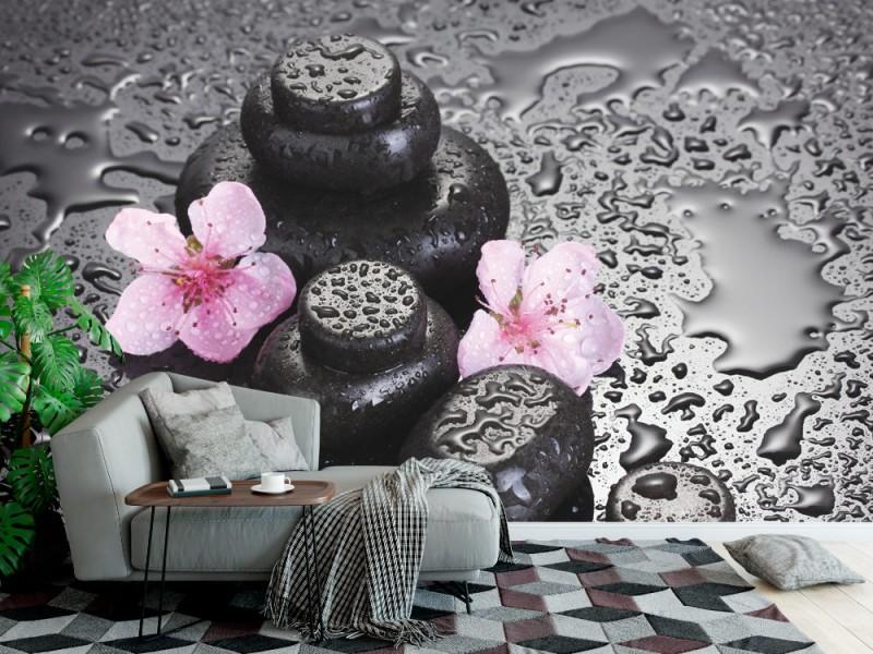 Fototapet spa stenar med droppar och rosa Sakura blommor (13520808)