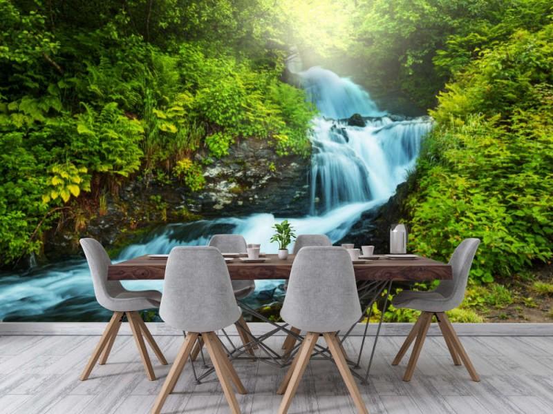 Fototapet Creek In Forest