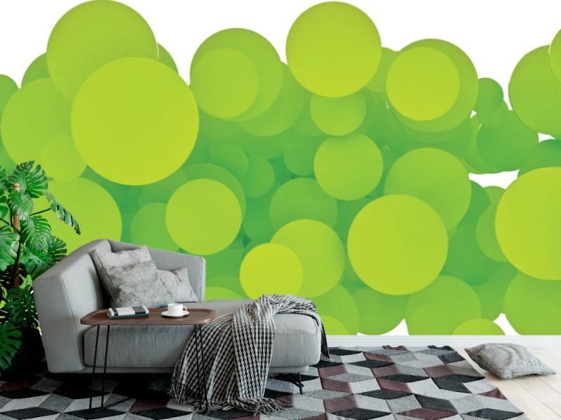 Fototapet abstrakta gröna cirklar på vit bakgrund (24141901)