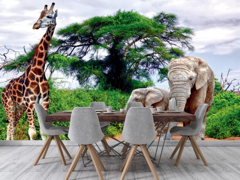 Fototapet giraff och elefanter i Kruger park (Sydafrika)