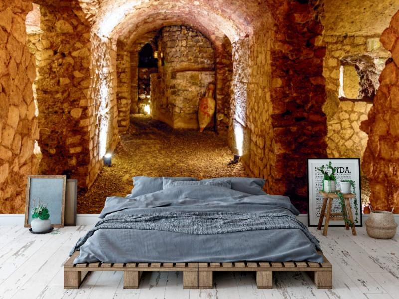 Fototapet Gallo-Roman horreum i Narbonne (Frankrike)
