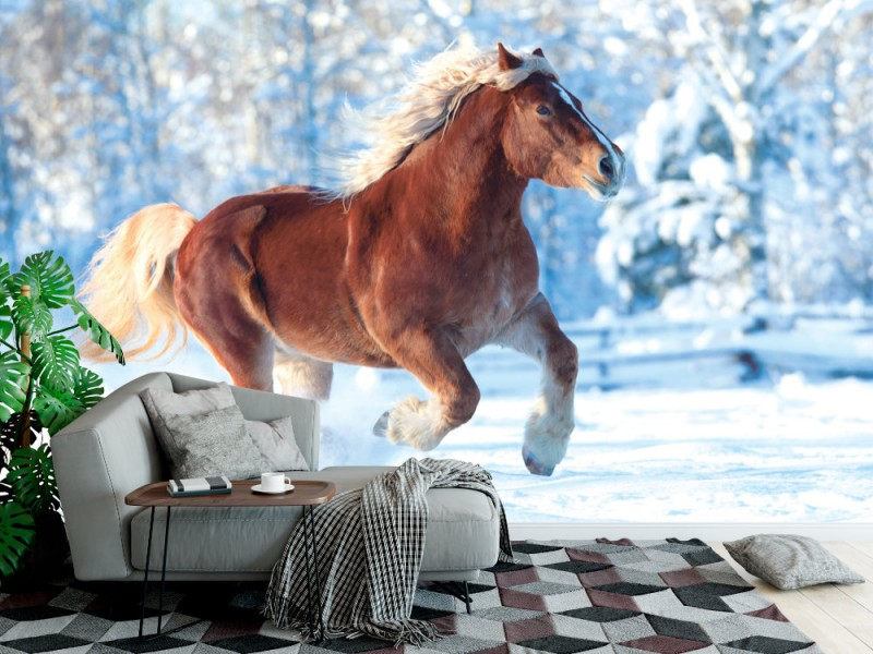 Fototapet hästkörningar på vinterbakgrund (32096818)