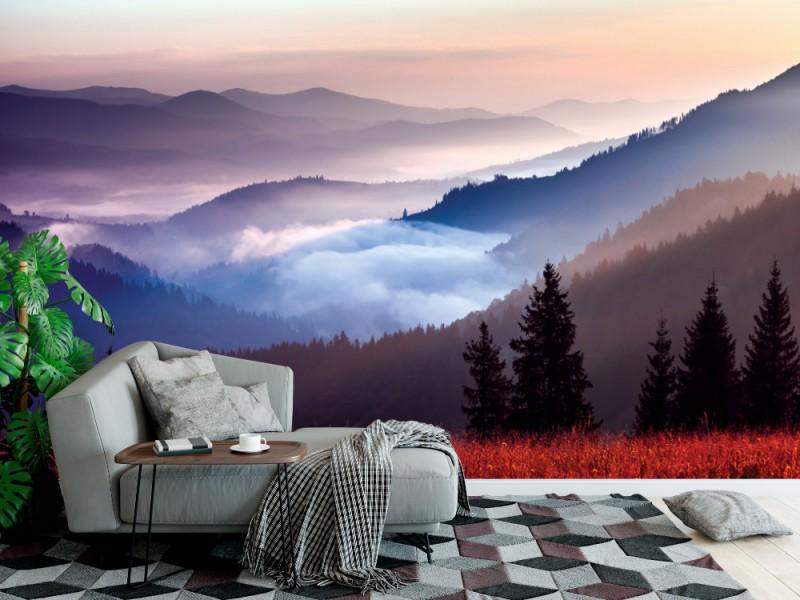 Fototapet med dimma och molnigt bergdallandskap i Ukraina (32313017)