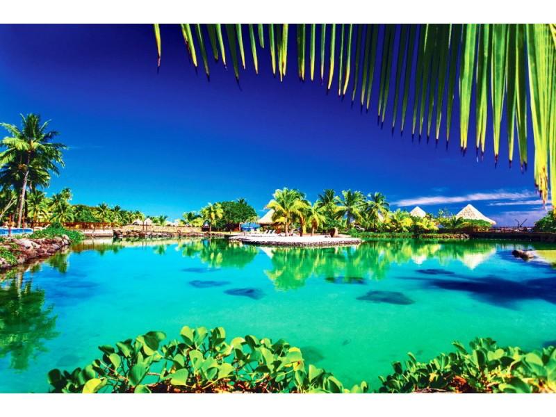 Fototapet Tropisk semesterort med en grön lagun och palmer