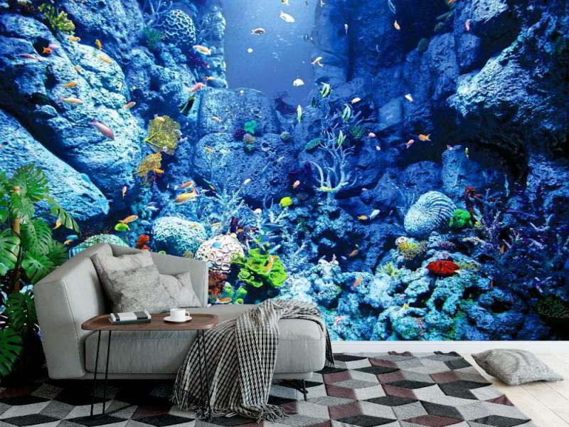 Fototapet undervattensvärld (57837603)
