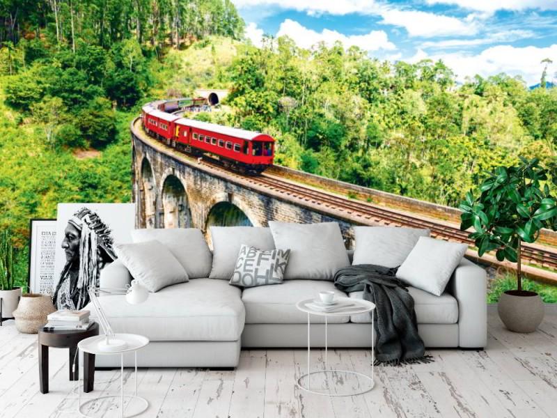 Fototapet tåg på Nio Arches Demodara bro i Sri lanka (80611122)
