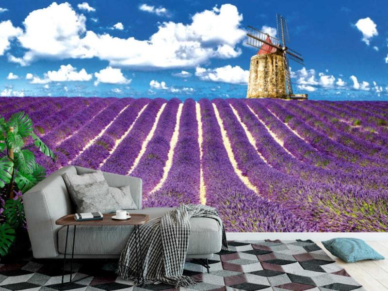 Fototapet blommande lavanderfält i förskott