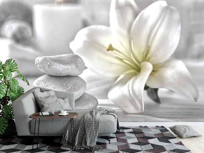 Fototapet vacker spa-sammansättning på träbord (94074641)