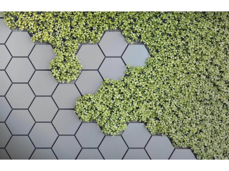 Fototapet 3d grön vertikal trädgård