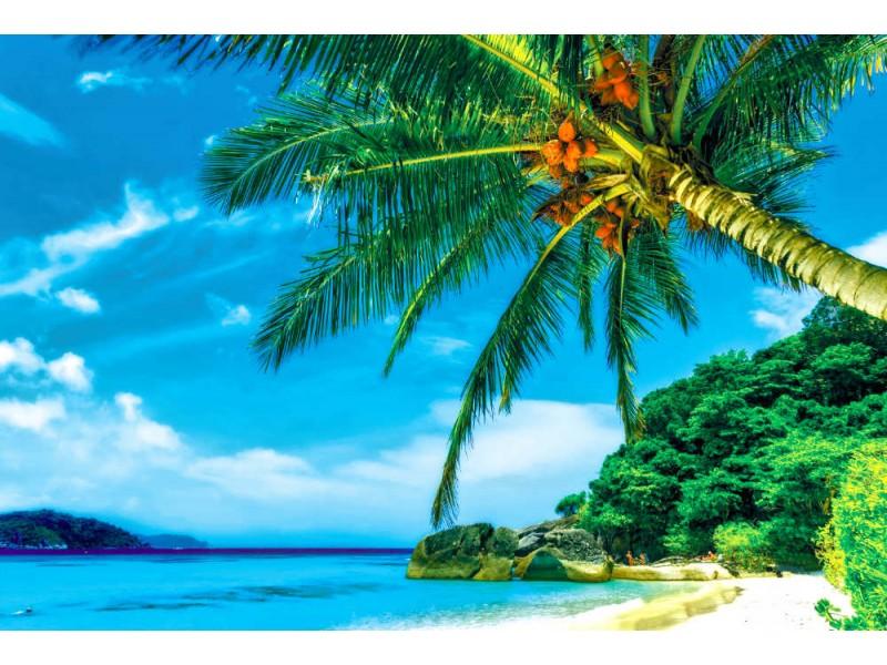 Fototapet strand på Similin öar på Phang Nga i Thailand (28017220)