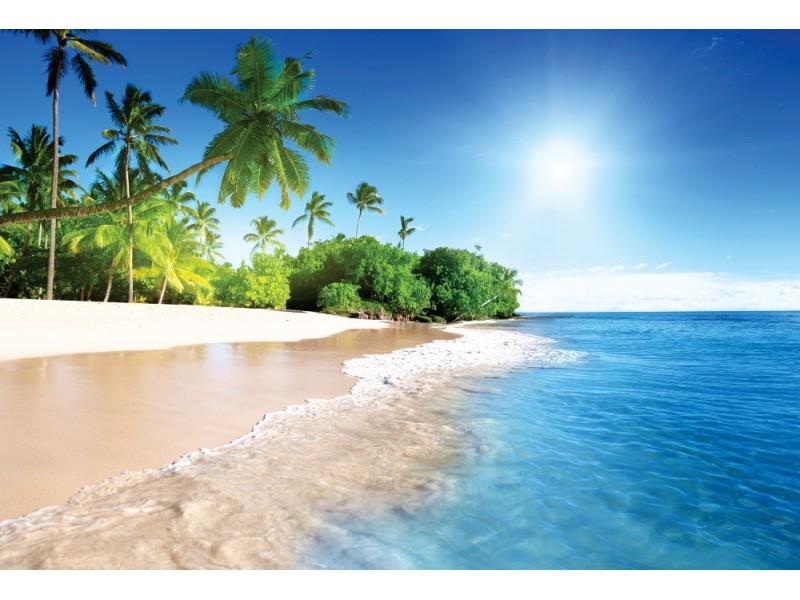 Fototapet Karibisk palmstrand