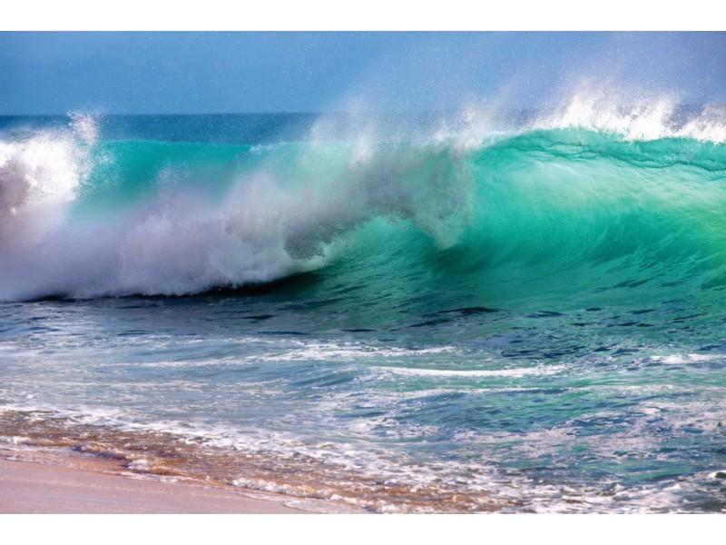 Fototapet Hawaii våg