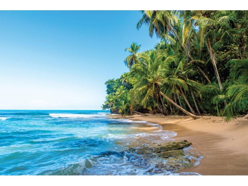 Fototapet paradis vild strand i Costa Rica