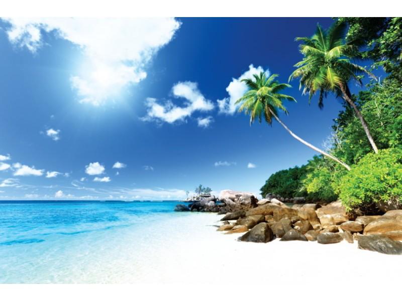 Fototapet strand på ön Mahe