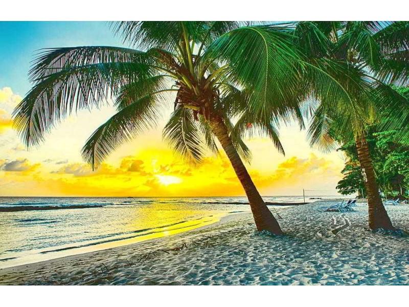 Fototapet härlig solnedgång över havet på Barbados