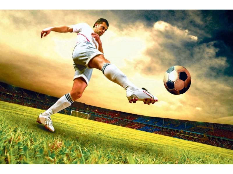 Fototapet fotbollsspelare på fältet (10356196)